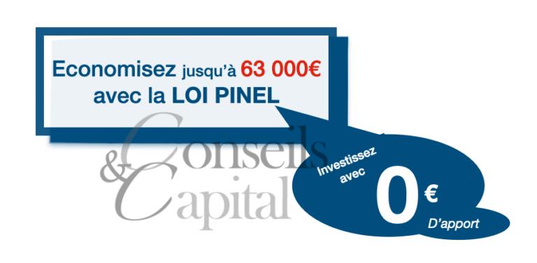 la-Loi-Pinel